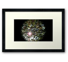 WeatherDon2.com Art 291 Framed Print