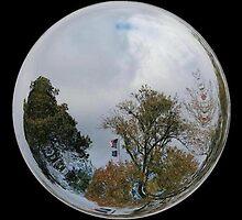 WeatherDon2.com Art 295 by dge357