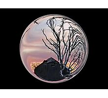 Cindy's Snow Globe's Photographic Print