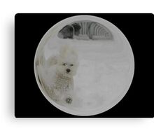 Cindy's Snow Globe's 3 Canvas Print