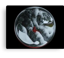 Cindy's Snow Globe's 6 Canvas Print
