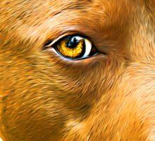 American Staffordshire Terrier Sticker