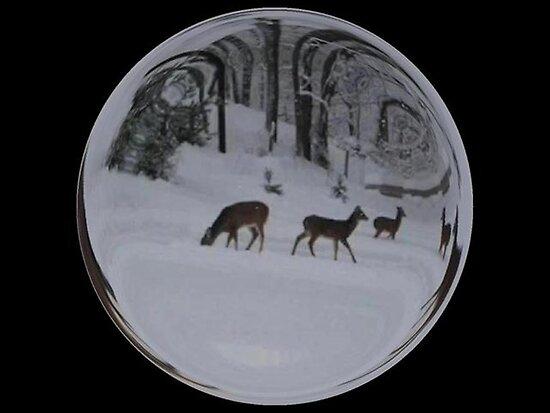 Cindy's Snow Globe's 8 by dge357
