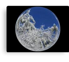 Cindy's Snow Globe's 9 Canvas Print