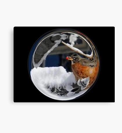 Cindy's Snow Globe's 10 Canvas Print
