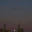 Full Moon In Portland by Dragomir Vukovic