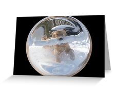 Cindy's Snow Globe's 12 Greeting Card