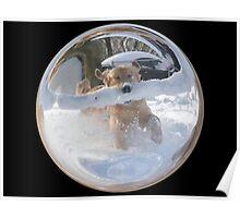 Cindy's Snow Globe's 12 Poster