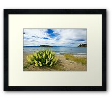 Lupins & the Lake, Bariloche, Argentina Framed Print
