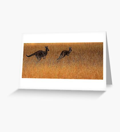 Kangaroos in Flight Greeting Card