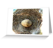 Willy's Egg Greeting Card