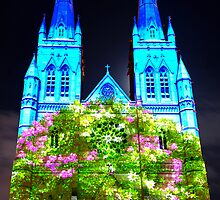 Tree Of Life | St. Mary's Cathedral Sydney | 2011 by Bill Fonseca