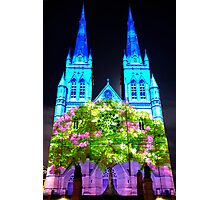 Tree Of Life | St. Mary's Cathedral Sydney | 2011 Photographic Print