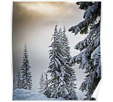 New Snow Poster