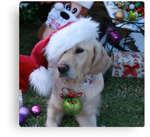 Golden Retriever with droopy Christmas Hat Canvas Print