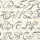 Letters in Script by Karen E Camilleri