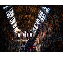 Dippy at the NHM Photographic Print