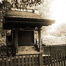 The Shrine by Karen Clark