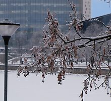 Winter Sketches by Irina777