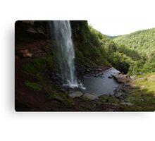 Upper Catskills waterfalls Canvas Print