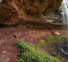 Panoramic view to the path under Catskills waterfalls  by Anton Oparin
