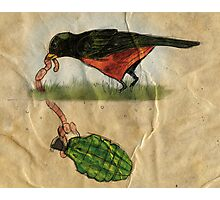 Bird Trap Photographic Print