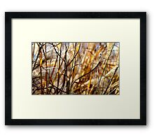 "And Then The Sun Shone Bright Upon The Land And Whispered, ""Return To Me In Sweet Bare Feet With Love..."" Framed Print"