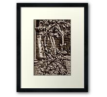 acorn fence Framed Print