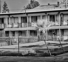 The Desert Sands Motel by Lenny La Rue, IPA