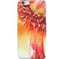 Poppy 2A iPhone Case/Skin