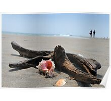Seashell on the sand at the ocean beach 5 Poster