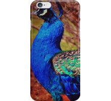 Simply Marvelous iPhone Case/Skin