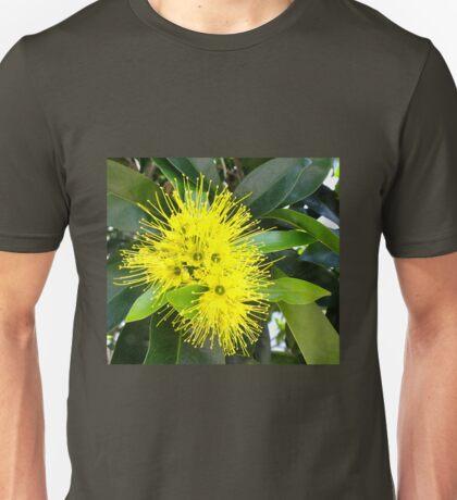 Golden Panda Australian Native Plant. T-Shirt