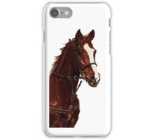 Proud - Thoroughbred Horse iPhone & iPod Cases iPhone Case/Skin