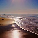 Morning at the Beach by Christine Anna Wilson