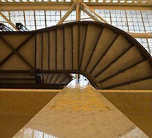 Rookery Upward View by Adam Bykowski