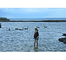 Six Swans aswimming Photographic Print