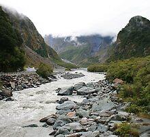 fox glacier valley, south westland, nz by rina  thompson