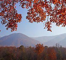 Layers of Autumn by Terri~Lynn Bealle
