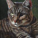 House of Cats #3 by artbyakiko