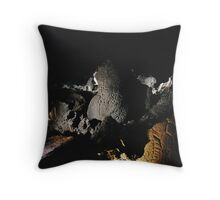 Lake Winnemucca Petroglyphs Throw Pillow