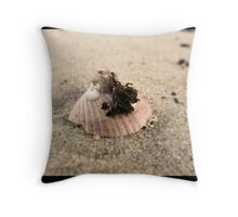 Macro Study: Cockel Shell II Throw Pillow