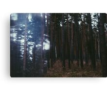 Distorted Woodland Canvas Print