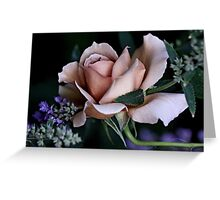 'Julia's Rose & Nepeta...' Greeting Card