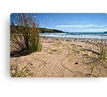 """Little Shelly's"" - Emerald Beach Canvas Print"