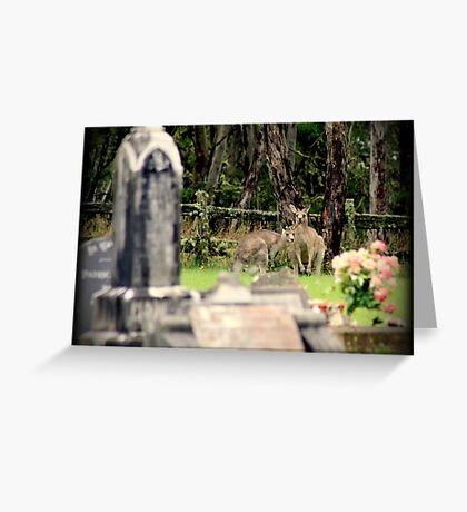 Cemetery Visitors  Greeting Card
