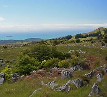 Middle Earth Panorama by Mark Bird