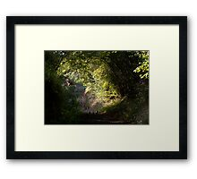 Flight of the partridge Framed Print
