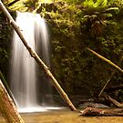 Marriners Waterfall in Paradise Valley by Bearfoote