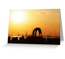 Yoga by the Statue of liberty, New York Greeting Card